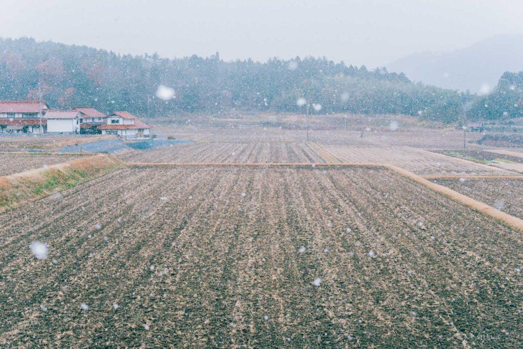 安宿と雪。【31あすか住民自治協議会】