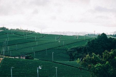 福岡県の旅も最終日です。【市町村一周の旅】